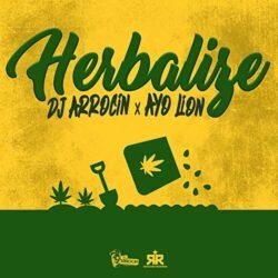 DJ ARROCÍN _ AYO LION_Cover Herbalize 2019