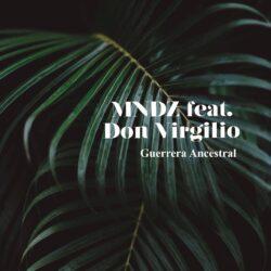 MINDZ feat DON VIRGILIO_Single cover 2020